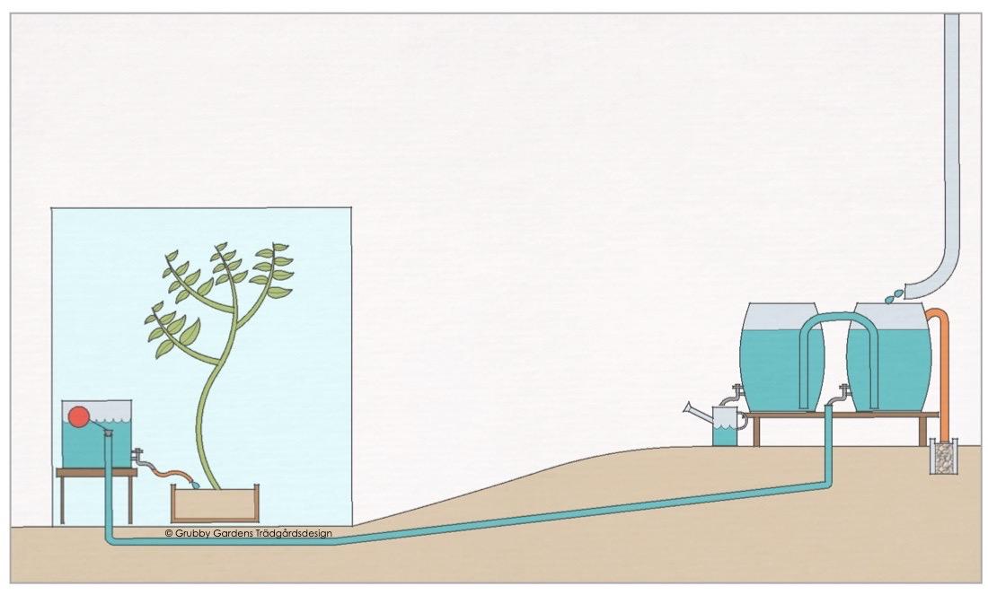 Ett finurligt system för att leda regnvatten dit man behöver den