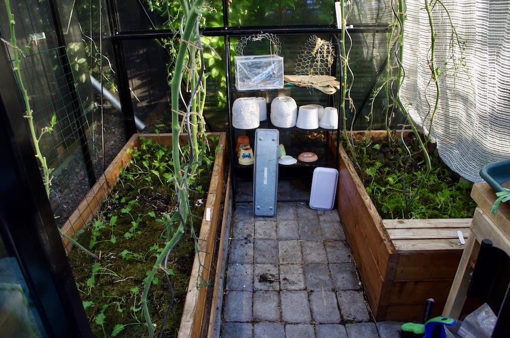 Växthus med upphöjda bäddar